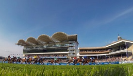 Rowley Mile Discover Newmarket horseracing
