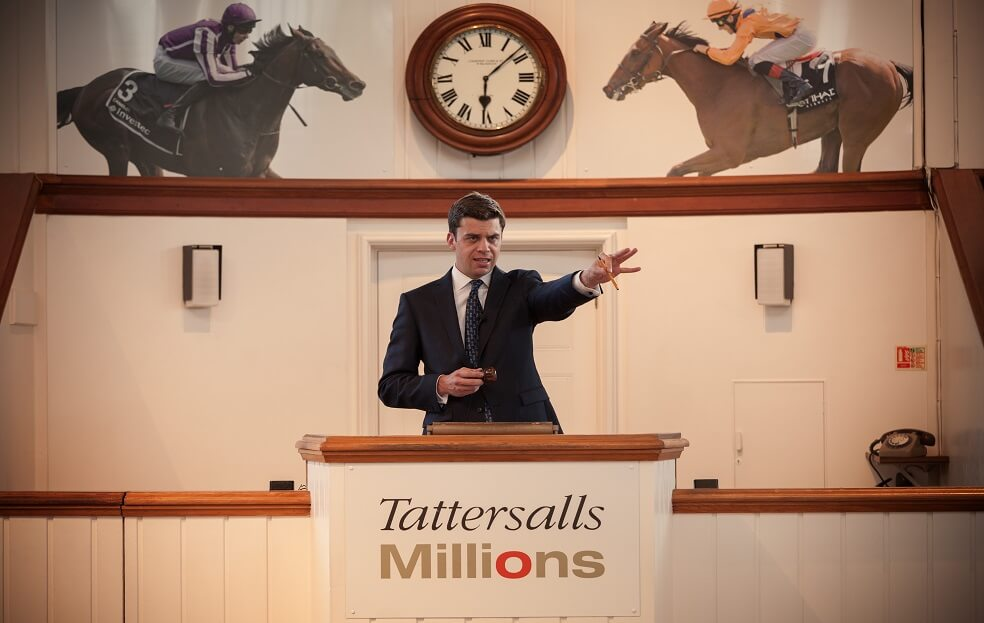 Tattersalls Tour horse racing days out