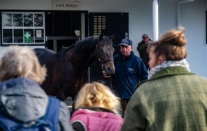 National stud tours