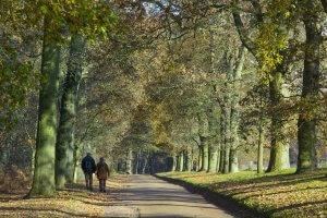 Country walks around Newmarket