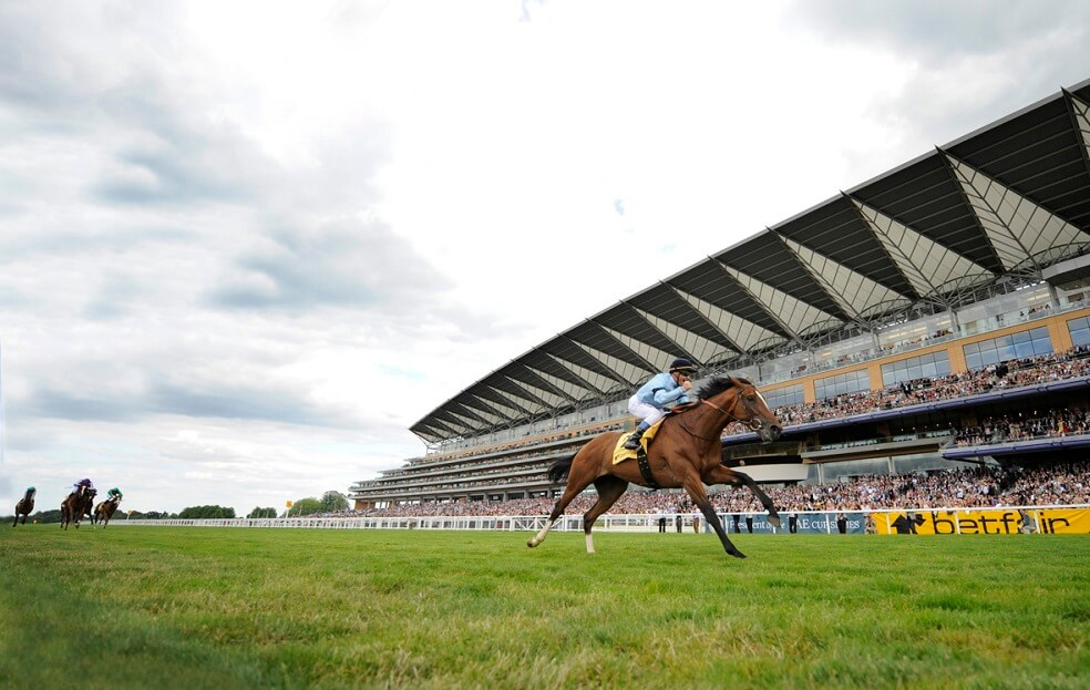 Discover Newmarket Highclere Thoroughbred Racing