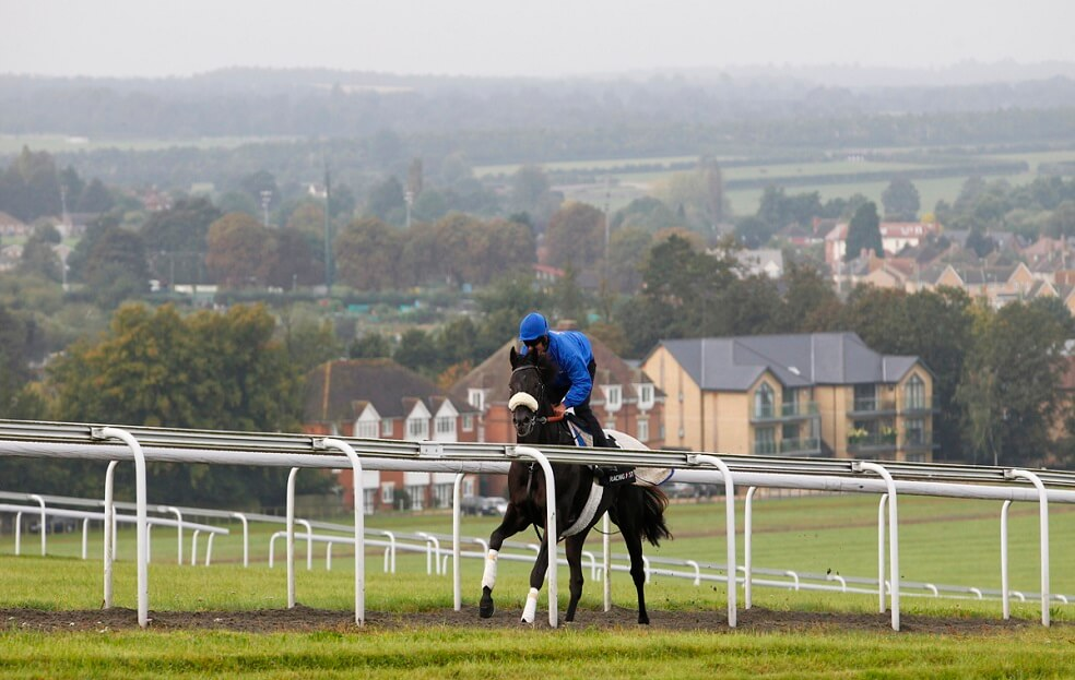 Tours - Discover Newmarket - Discover Newmarket
