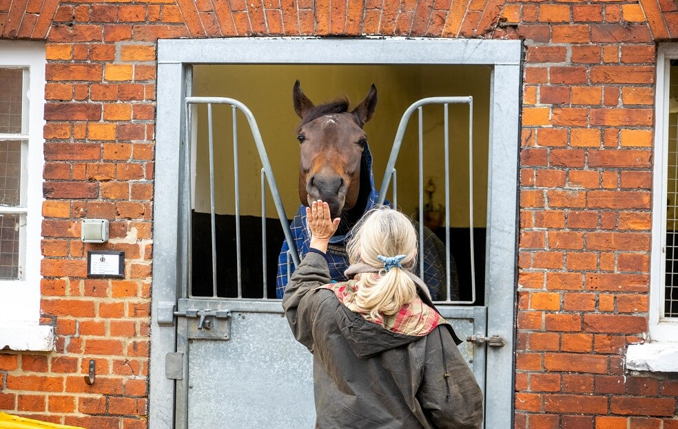 Ultimate Newmarket Experience Tour