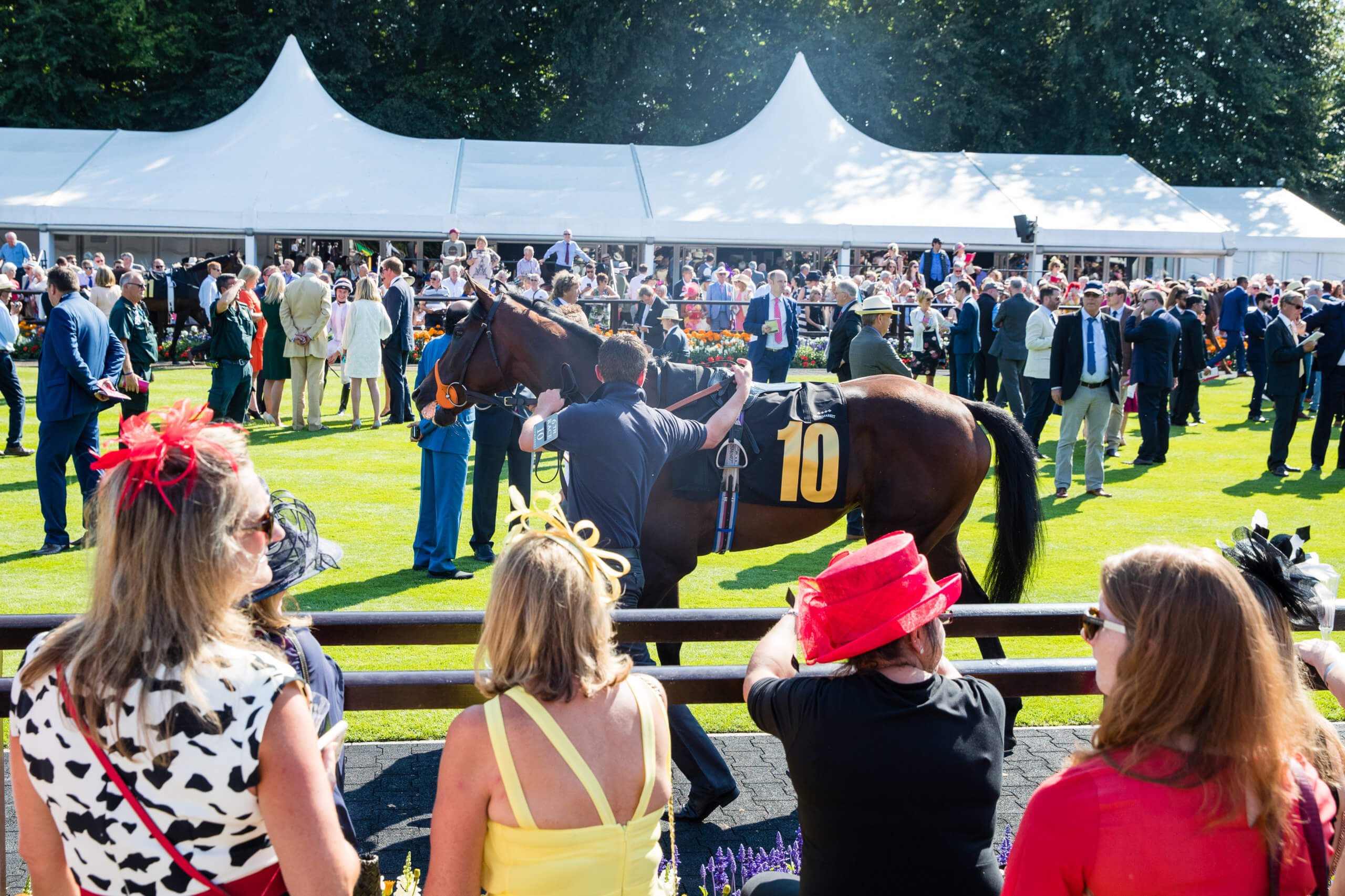 Parade Ring at Newmarket Racecourse